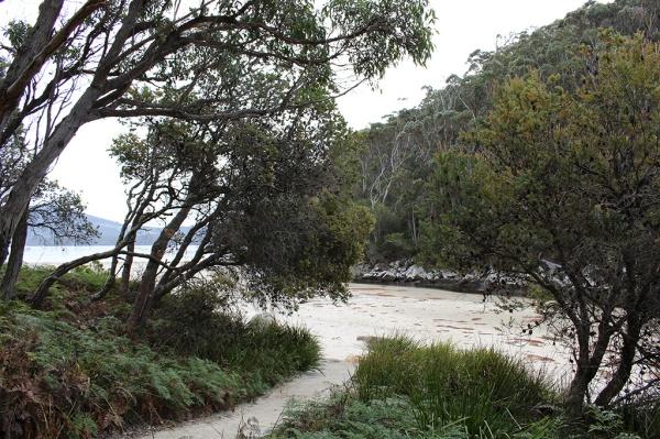 sandy-beach-trail